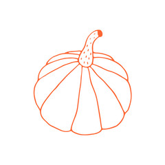Linear cartoon hand drawn pumpkin. Cute vector colorful doodle pumpkin. Isolated funny pumpkin illustration on white background.