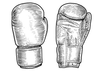 Boxing gloves illustration, drawing, engraving, ink, line art, vector