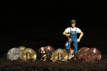 Bitcoin Farm - digitale Währungen, Fiatgeld, Kryptowährungen. Was bringt die Zukunft?
