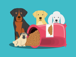 cute dogs and Packet of dog food over blue background, colorful design vector illustration