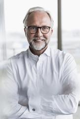 Portrait of smiling mature businessman