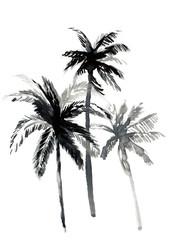 Palmtrees II