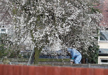 FA forensics investigators climbs over the back garden fence of the home of Nikolai Glushkov in New Malden, on the outskirts of London