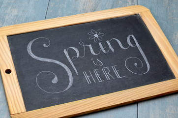 SPRING IS HERE on chalkboard