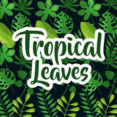 Tropic leaves background with frame for your text. texture vector.
