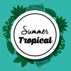 summer tropical season label card vector illustration