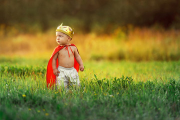 Little child prince summer day outdoors around colorful green grass. King kid in costume cute hero warrior,red cloak,gold crown. Portrait caucasian baby 1-2 years background lawn, nature.Copyspace.