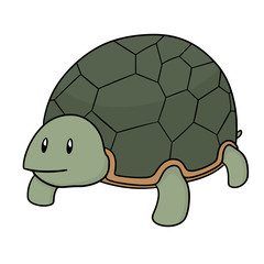 vector of turtle