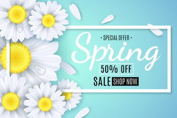 Spring sale banner. White flowers of chamomile on a light blue background. Seasonal poster. Water drops. Special offer. Vector illustration