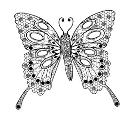 Butterfly vector by hand drawing