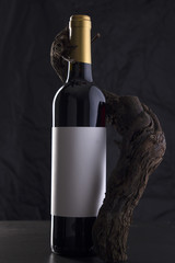 Isolated Red Wine Bottle in a Black Background with Vine