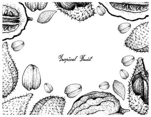 Hand Drawn Frame of Luk Rakam and Etrog Fruits