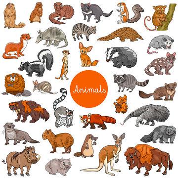 wild mammals animal characters big set