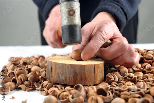 A woman in her hand hammer for crack hazelnuts