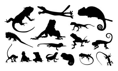 set of Various Iguana Silhouette vector illustration, Various chameleon logo vector