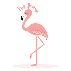 Illustration of cute pink flamingo standing on one leg with text