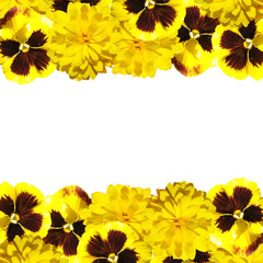 Beautiful floral background of pansies and rudbeckia