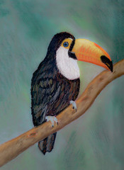 An art work of a toucan on a tree branch, drawn with a soft pastel.