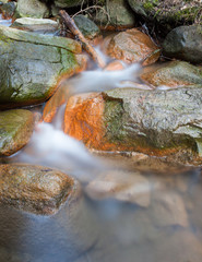 Small stream and rocks at spring forest