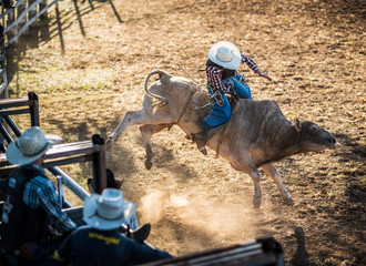 bull riding at a Rodeo