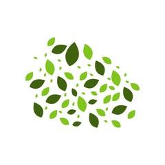 Green Leaf Vector Template Design