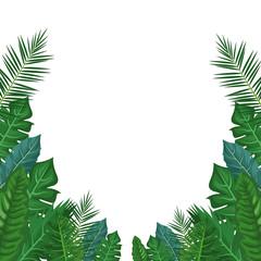 Leaves and plants frame vector illustration graphic design vector illustration graphic design