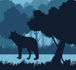 Wolf in the jungle blue silhouette vector illustration graphic design