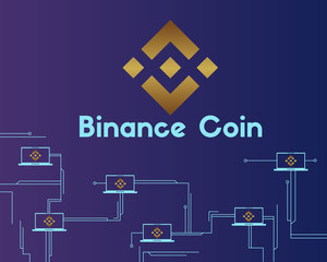 What Binance Coin Features Make It A Worth Holding In 2021? 3