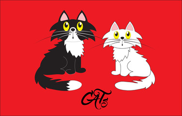 Cats, vector illustration. Black cat and white kitty on a red background. Family cartoon illustration.