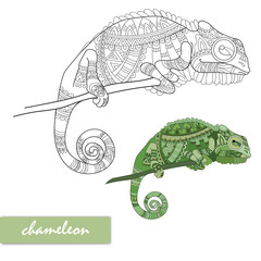 Chameleon with doodle pattern. Coloring page - zendala, design for relaxation for adults, vector illustration, isolated on a white background. vector