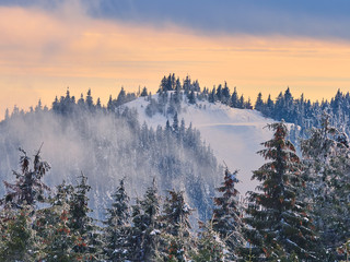 Poster Morning with fog Winter Landscape in Madaras, Harghita, Romania