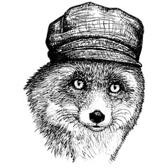 Vector fox in a hat and Hand drawn illustration of dressed fox.