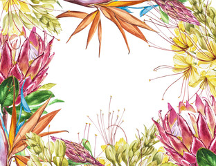 Tropical blank for text. Watercolor Protea, Caesalpinia and Strelitzia flowers. Perfect for invitation, wedding or greeting cards.