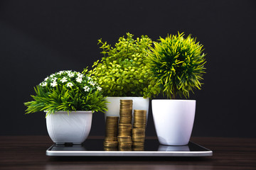 Coins stacks and little tree or flower bouquet in white vase with tablet computer business planning vision and finance analysis concept.