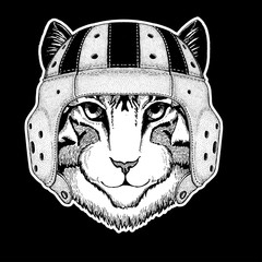 Rugby player. Image of domestic cat Hand drawn illustration for tattoo, emblem, badge, logo, patch, t-shirt