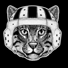 Rugby player. Wild cat Fishing cat Hand drawn image for tattoo, emblem, badge, logo, patch