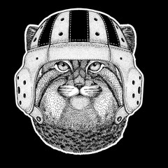Rugby player. Wild cat Manul Hand drawn image for tattoo, emblem, badge, logo, patch