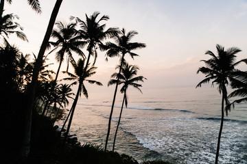 Sunset on the Sri Lanka beach