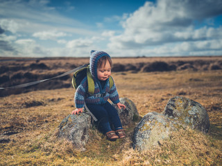 Little boy sitting on the moor