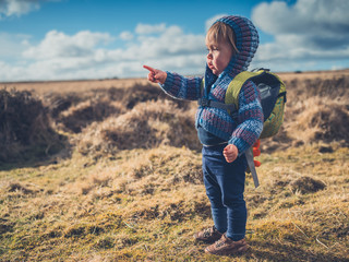 Little toddler boy standing on moor