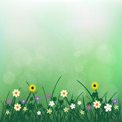 nature flowers plant on blur green bokeh