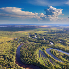 Forest plain with river