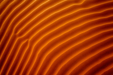 Close-up of ripples in the sand, Riyadh, Saudi Arabia