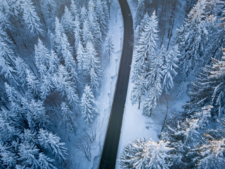Aerial view of a road through winter landscape, Gaisberg, Salzburg, Austria