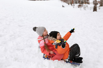 Cute children sledding in snowy park on winter vacation