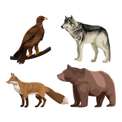 Wild animals colorful drawing vector illustration graphic design