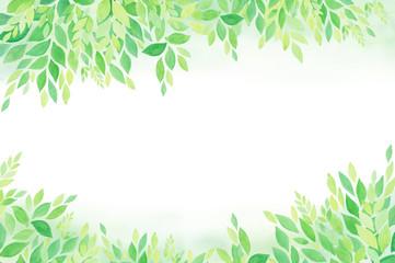 グリーン エコロジーイメージ  水彩 手描き
