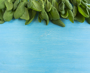 Green vegetables. Spinach on blue wooden background. Top view. Vegetables at border of image with copy space for text.