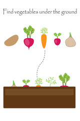 Find the vegetables under the ground, game with pictures for children, education game for kids, preschool worksheet activity, task for the development of logical thinking, vector illustration