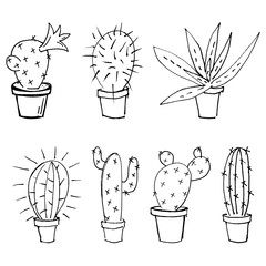 set of vector illustration of sketch of cactus and aloe drawn by black marker isolated on white background